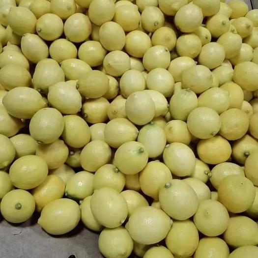 重庆万州 黄柠檬尤力克柠檬 安岳柠檬 中果 有坏包赔