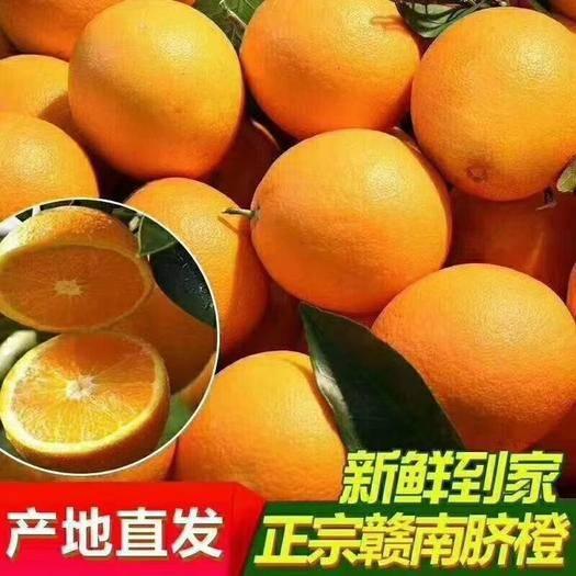 赣州寻乌县 江西正宗赣南脐橙20斤甜橙子季节水果年货礼品