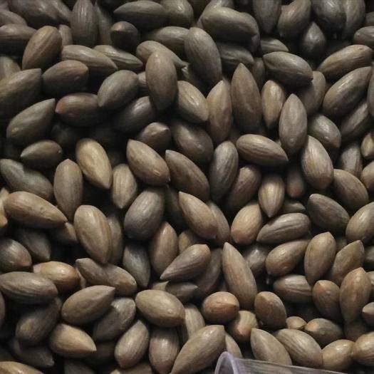 诸暨市 来自深山出自农家自产自销自家的香榧质量保证口感香脆鲜松坚果
