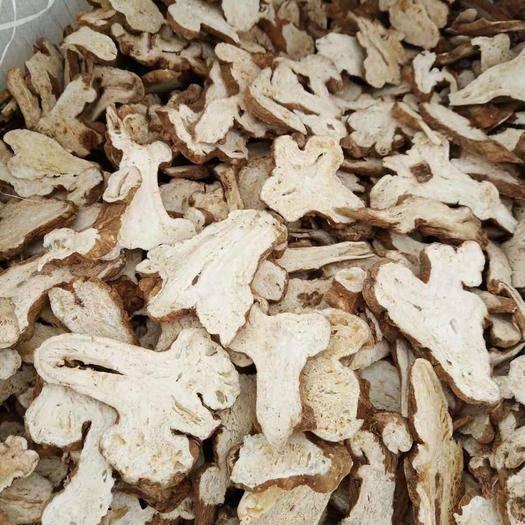 亳州谯城区土炒白术 片无硫有硫统货实物拍摄