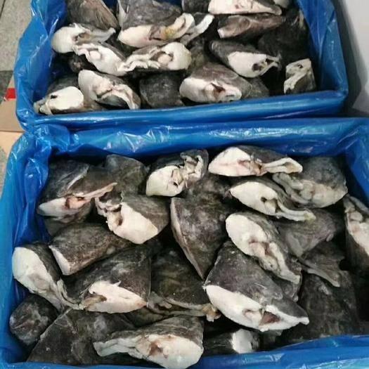 济南 鲽鱼头(格陵兰岛)