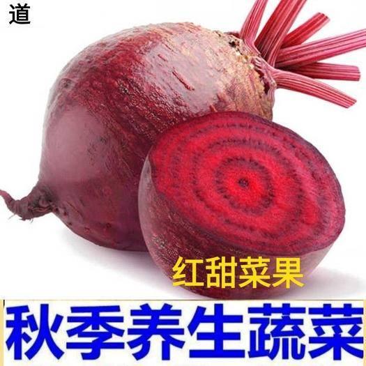 唐山迁安市甜菜根 红菜根养生菜水果菜5斤一箱包邮