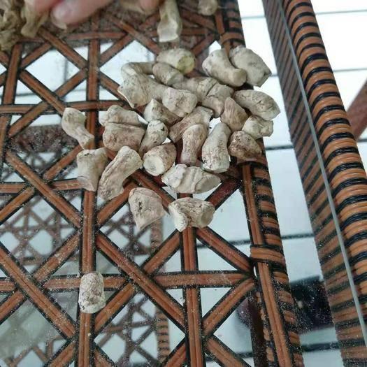 商洛商南县 小双剪香菇脚干货产地直销陕西绿昌隆农产品