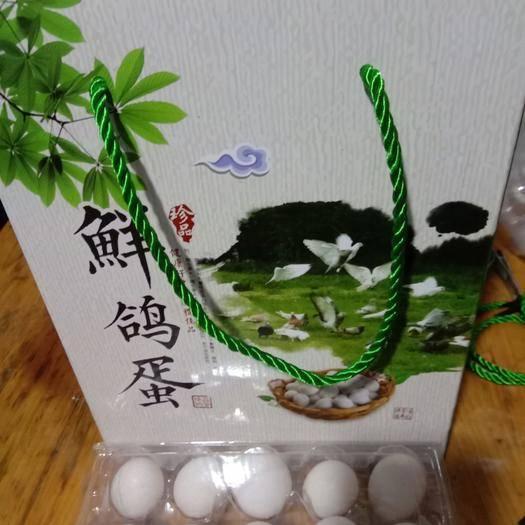 商丘虞城縣肉鴿蛋 散養鮮鴿蛋,疫情期間正常發貨,價格便宜不求掙錢,只求支援