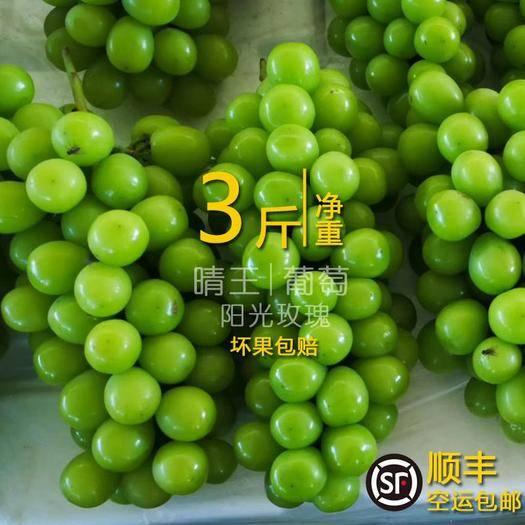 元阳县 年货3斤包邮云南特产阳光玫瑰晴王青提新鲜水果无籽葡萄香印提
