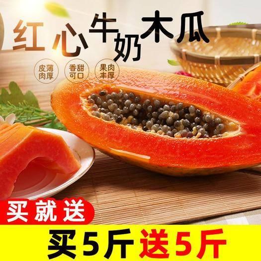 西雙版納景洪市 云南特產紅心木瓜牛奶木瓜應季新鮮水果3/5/10斤包郵