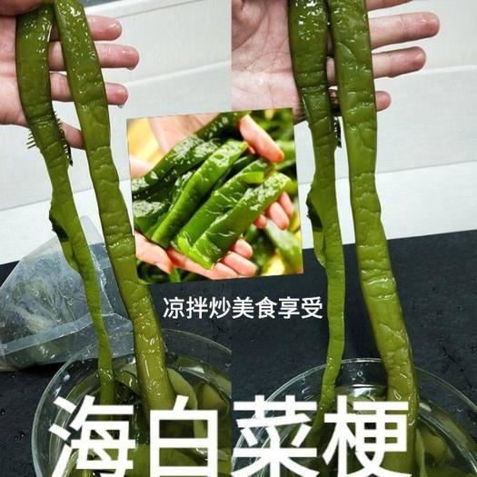 唐山迁安市 盐渍海白菜梗海白菜梆日本人长寿的秘诀吃海洋中的食物5斤装包邮