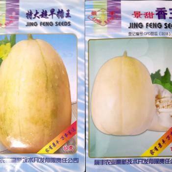 特大超早糖王和景甜香玉甜瓜种子
