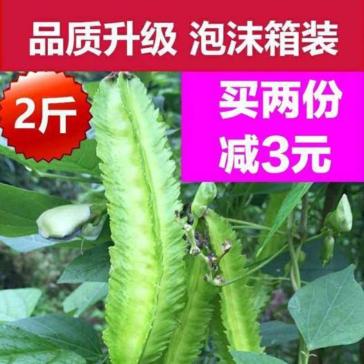 三亞 2斤裝 買2份減3元 海南三亞新鮮四角豆現摘現發蔬菜四棱豆