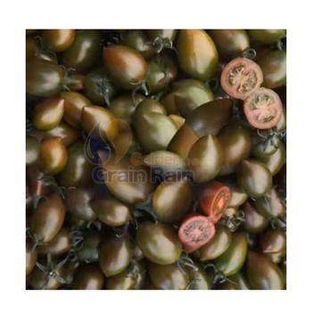 紫玉番茄种子 紫彩番茄水果种子高产紫色小型西红柿四季彩色圣女樱桃番茄种籽