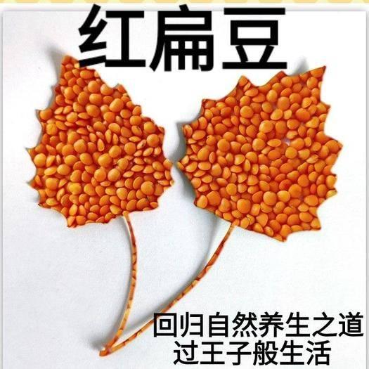 唐山遷安市 紅扁豆你沒吃過的美味煮粥飯營養5斤裝包郵