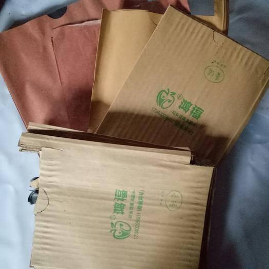 資中縣 大五星枇杷套袋