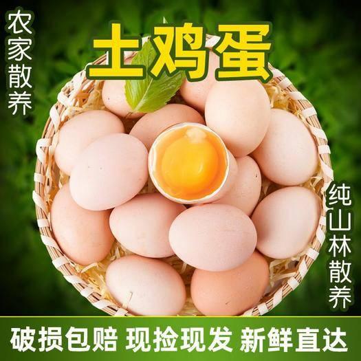 長春九臺區 【破損包賠】農家山林散養土雞蛋新鮮柴雞蛋正宗笨雞包郵