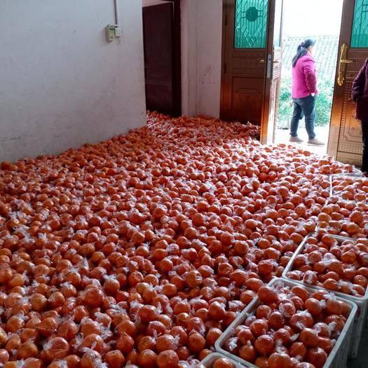 湘西保靖縣椪柑 優質碰柑,皮細水多口感特甜而脆