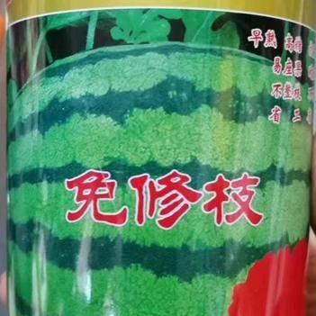 促销包邮懒汉甜王西瓜种子具有抗茬抗旱抗病能力