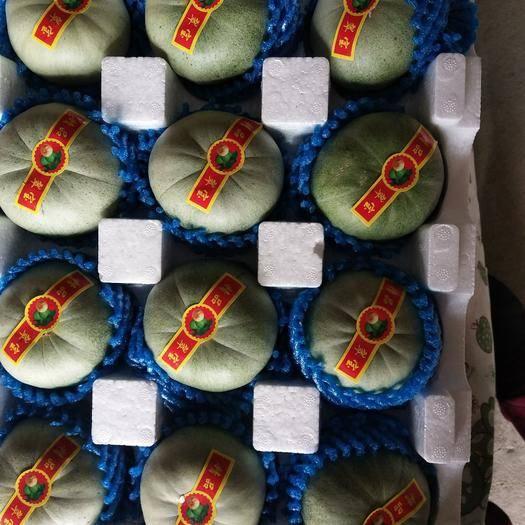 锦州北镇市绿宝瓜 大量香瓜上市,口感香甜,价格美丽,现货供应
