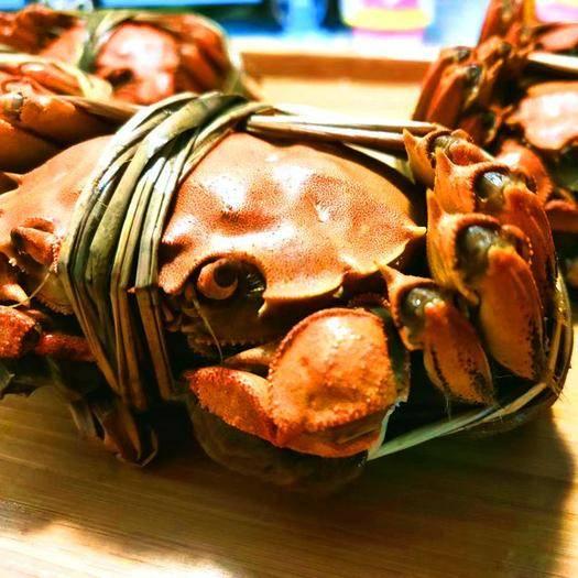 兴化市 江苏兴化精品大闸蟹礼盒套餐,支持一件代发价批发价大闸蟹礼盒