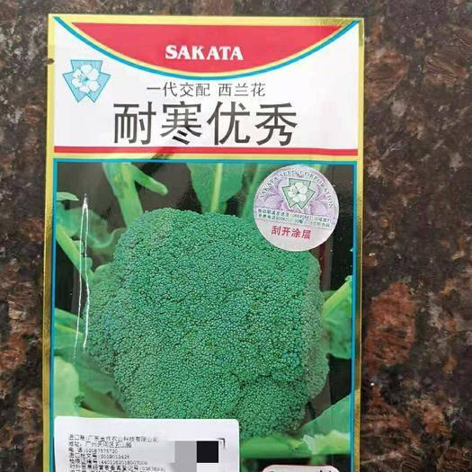 漳州南靖县 耐寒优秀西兰花种籽 西兰花种子 青花菜蔬菜种籽 西蓝花菜