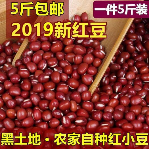 哈爾濱五常市 新紅豆 東北黑龍江農家自產紅小豆 赤小豆 紅豆薏米?一份5