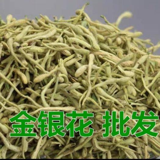 黔西安龍縣 金銀花茶500g農家自然曬干無硫養生茶花草茶夏季降火茶下
