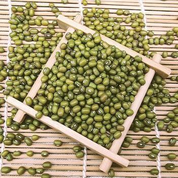东北绿豆5斤/包邮 天然无污染 清热排毒 基地直供 批发代发