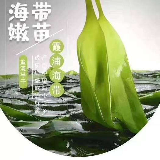霞浦县 特级霞浦海带嫩苗,一包一斤,火锅凉拌佳品