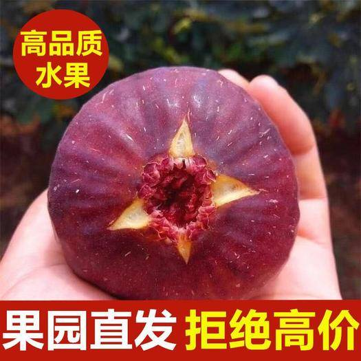 崇州市 新鮮無花果水果當季整箱包郵批發現摘現發1/2/3斤