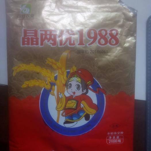 上饶婺源县水稻品种 杆矮如婆,质优产量高,公司正品