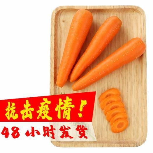 西安高陵区 【包邮】10斤现挖现发 新鲜水果胡萝卜 农家自种水果红萝卜