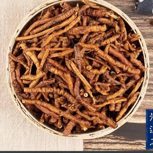 綿陽江油市 制遠志-中藥材炙遠志蜂蜜炙遠志肉蜜