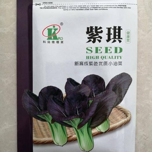 张掖甘州区紫油菜种子 由国外引进的独特的新特蔬菜新品种(杂交种)