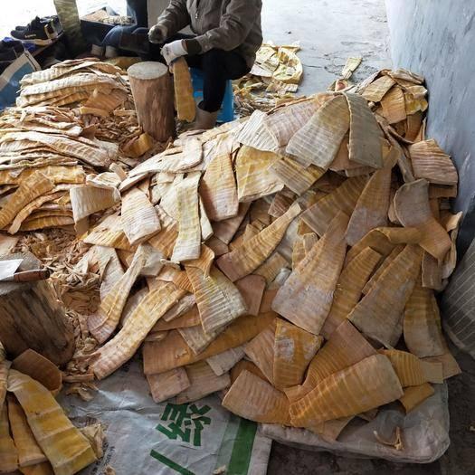 撫州黎川縣火鍋筍片 壓榨鮮筍片