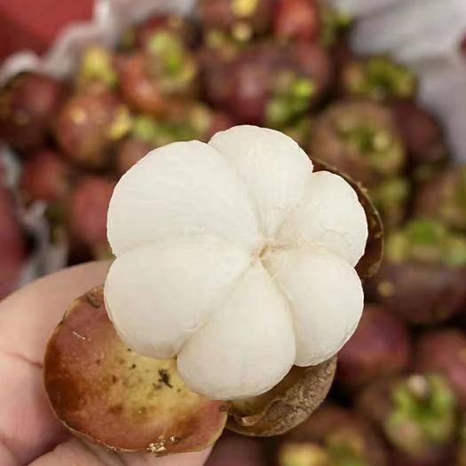 昆明東川區 泰國進口山竹5斤裝當季新鮮水果整箱5A大果熱帶孕婦應季