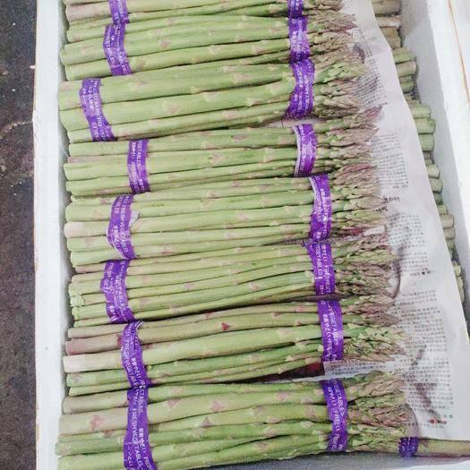 北京 精品蘆筍銷售