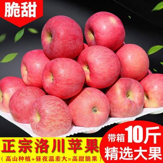 渭南 【精选】陕西正宗洛川红富士苹果5斤10斤脆甜不打蜡孕妇水果整