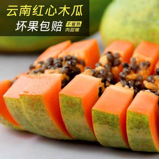 安宁市 云南红心牛奶木瓜整箱净重10斤新鲜水果现摘当季大青木瓜甜包