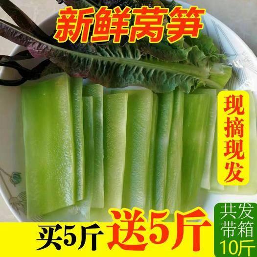 昆明官渡区 新鲜莴笋蔬菜现货包邮供应