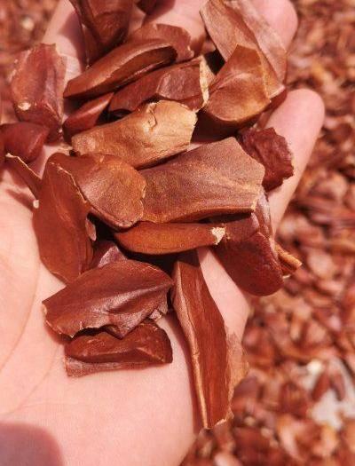 昆明官渡區其它全草類 優質向天果新貨 白心代客定制分裝  大貨批發  一件代發