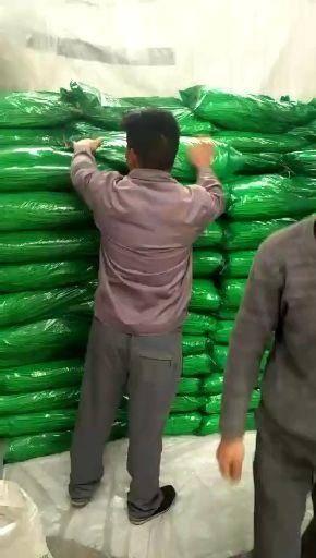 濟寧金鄉縣紅帽蒜苔 蒜薹大量供應代收代存冷庫儲存貨發全國長年供應
