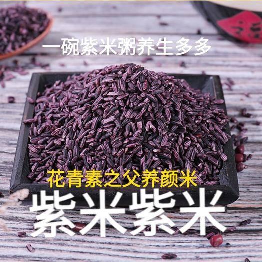 唐山遷安市 紫米花青素之源超好吃e原產地直達你的餐桌軟糯香甜二斤裝包郵