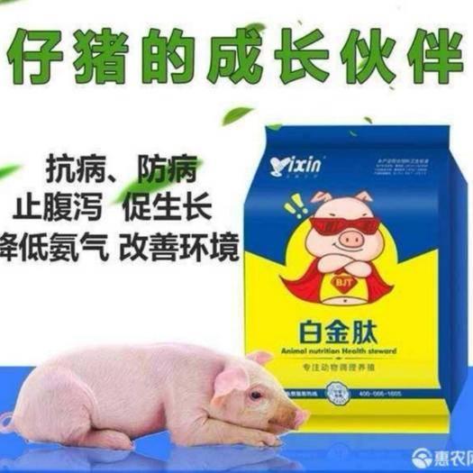 原陽縣營養添加劑 小豬吃什么不拉稀毛色好長的快?用仔豬專用白金肽!