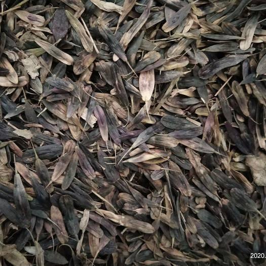 保定安国市板兰根种子 出售中药材板蓝根种子,干净无杂,过筛货,芽率90以上