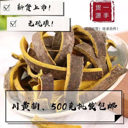 亳州譙城區 黃柏 川黃柏 產地直銷量大從優 包郵