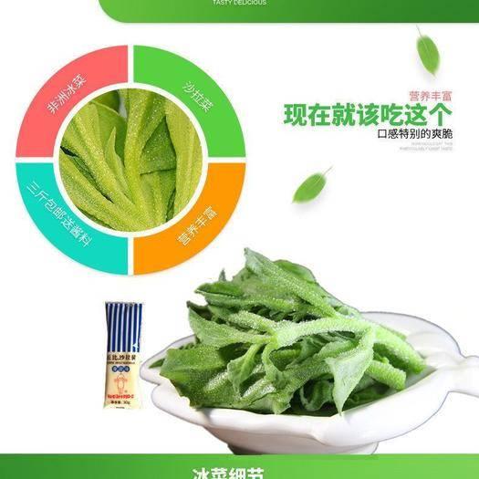 潮州湘桥区 新鲜现摘非洲冰草菜新鲜蔬菜水晶冰菜蔬菜沙拉即食生吃5斤包邮