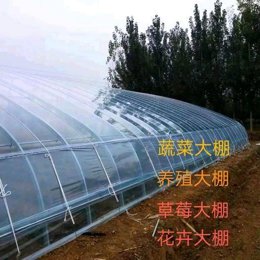 天津塑料薄膜温室大棚 蔬菜棚 养殖棚 西瓜棚 花卉棚 冷棚 暖棚 骨架设计合理安全