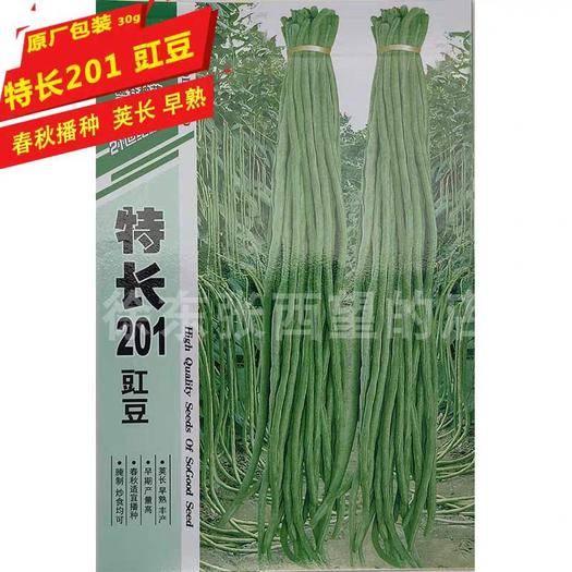 武漢 特長豇豆