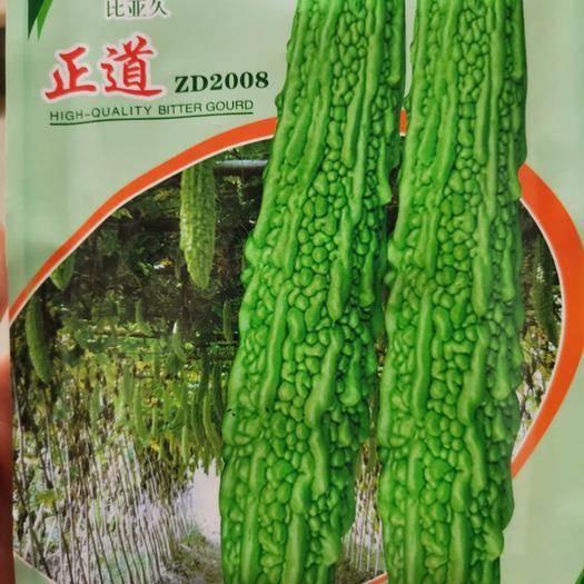夏邑縣 正道苦瓜種子,印尼進口原種,翠綠肉質細脆,耐熱耐濕,抗病性