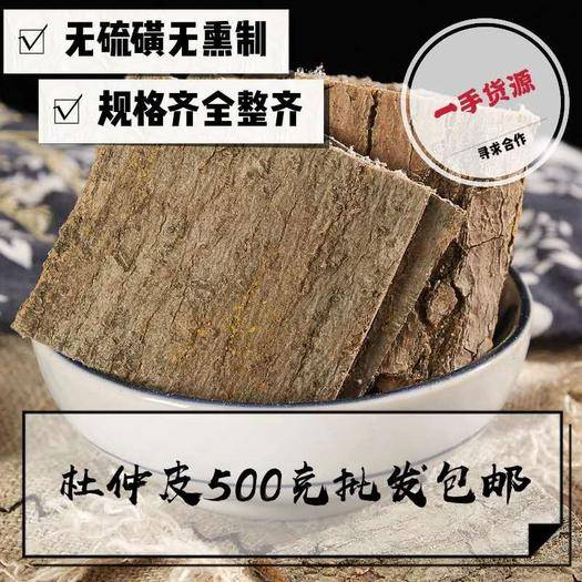 亳州 杜仲 杜仲皮 產地直銷量大從優 包郵