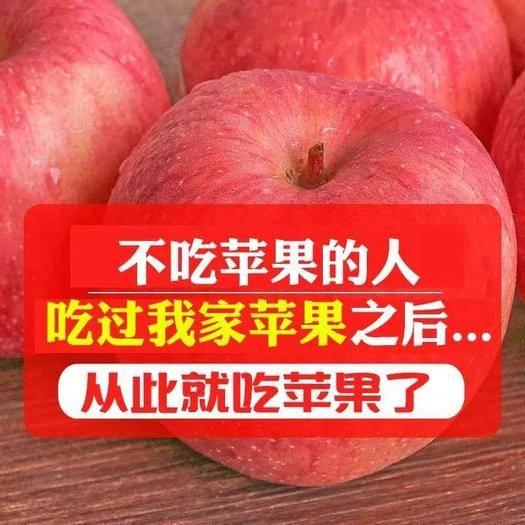 安陽縣 【包郵】山西紅富士蘋果水果新鮮當季脆甜丑蘋果5/10斤起拍