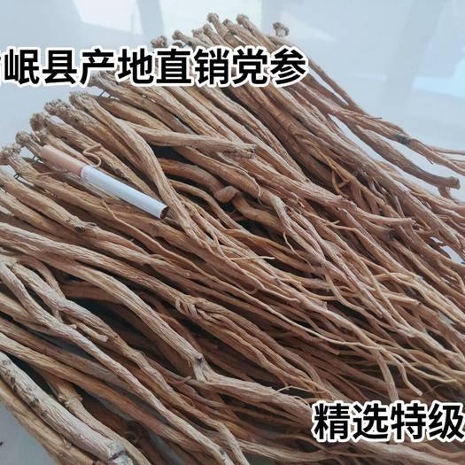 定西岷县党参 岷县产地直销 精远优质原条   无硫 质量保证 下单即可发货